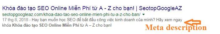 Thẻ Meta Description khi hiển thị trên Google