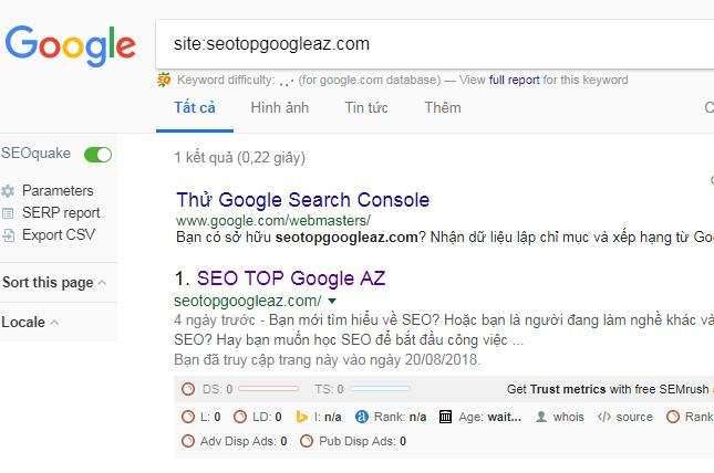 Công cụ tìm kiếm có lập chỉ mục cho website của bạn không?