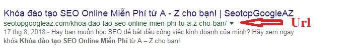 Url của bạn khi xuất hiện trên Google